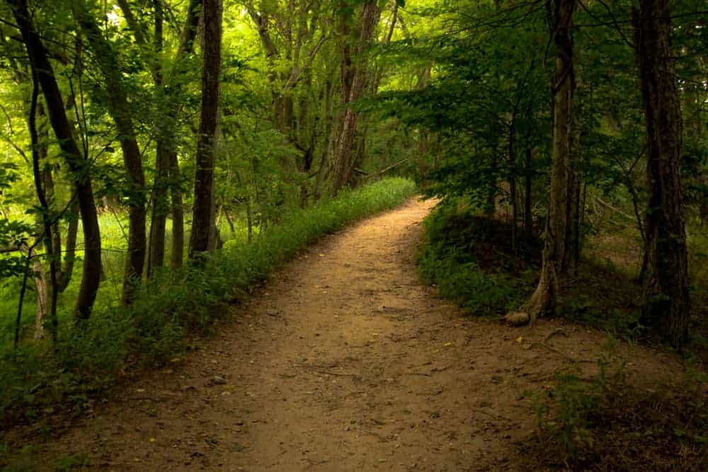 Hiking in Neshaminy State Park near Philadelphia, PA