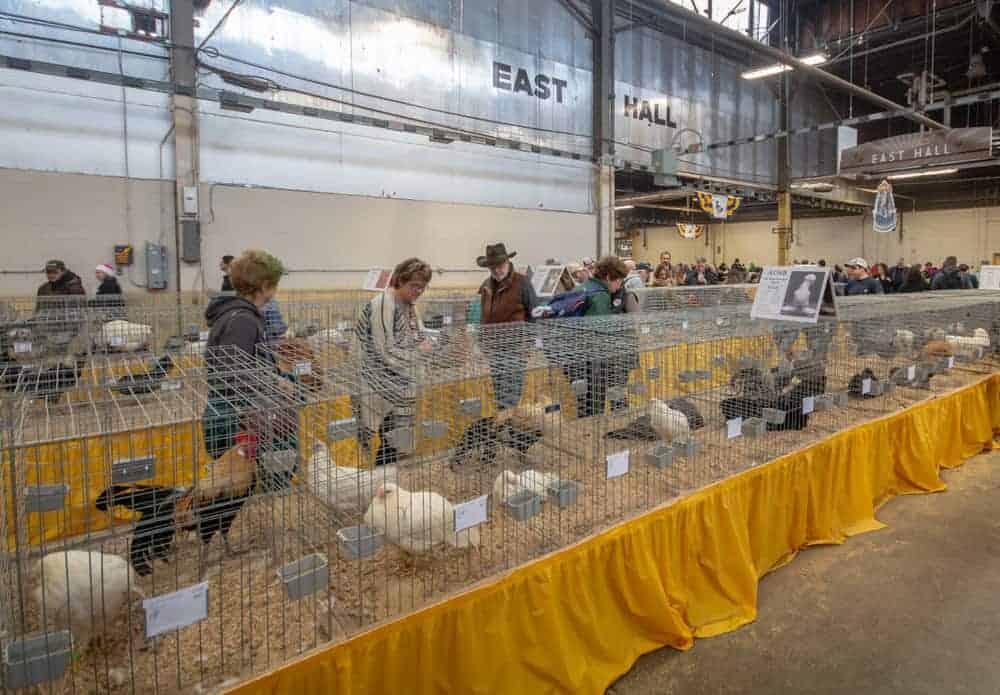 The Pennsylvania Farm Show in Harrisburg: Everything You