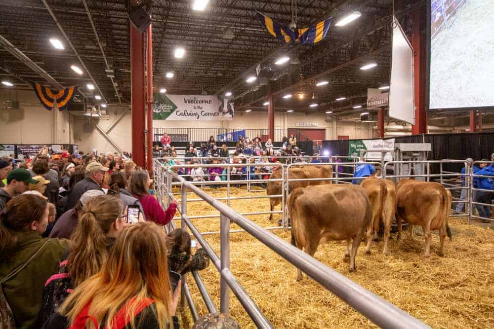 The Pennsylvania Farm Show in Harrisburg: Everything You