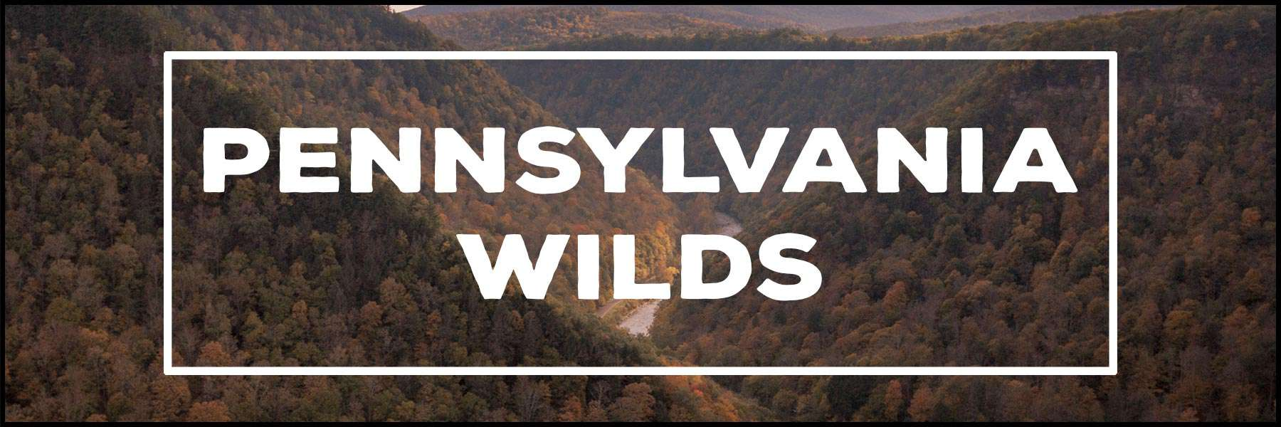 The best things to do in the Pennsylvania Wilds