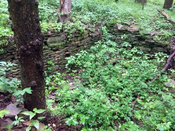 Ruins in Braddock's Trail Park in North Huntingdon, Pennsylvania