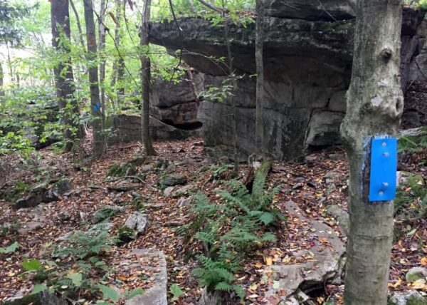 Canyon Vista Trail in Worlds End State Park