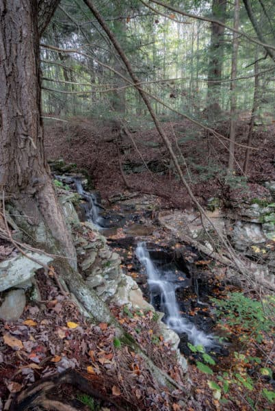 Cold Run Falls near Worlds End State Park