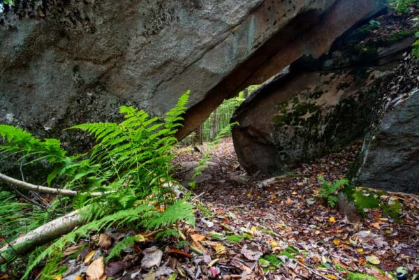Rock Tunnel on the Cold Run Trail in Loyalsock State Forest