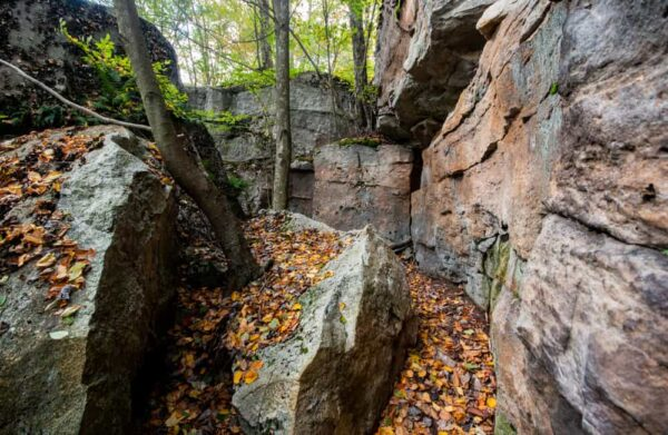 The Cold Run Trail is one of the best hiking trails in Worlds End State Park