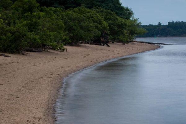 Beach at Neshaminy State Park in Bucks County, PA