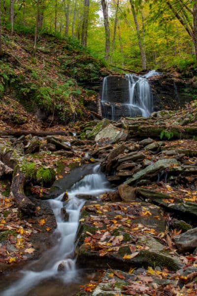 Cold Run Falls in Loyalsock State Forest