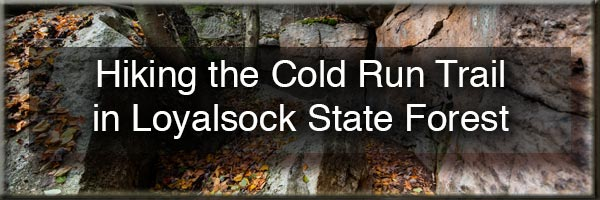 Cold Run Trail in Worlds End State Park