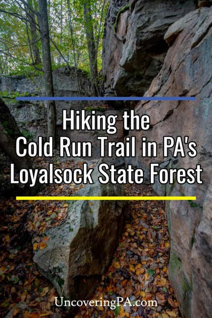 Hiking the Cold Run Trail in Loyalsock State Forest in Pennsylvania