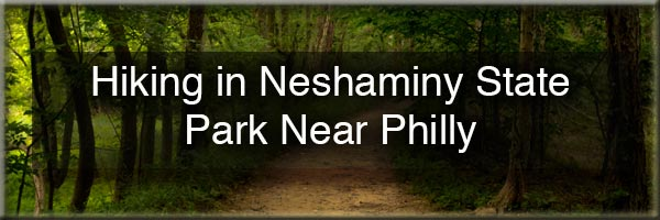 Hiking in Neshaminy State Park