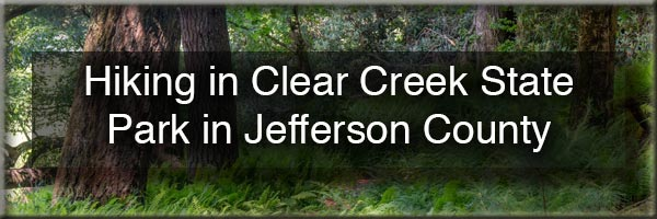 Hiking in Clear Creek State Park