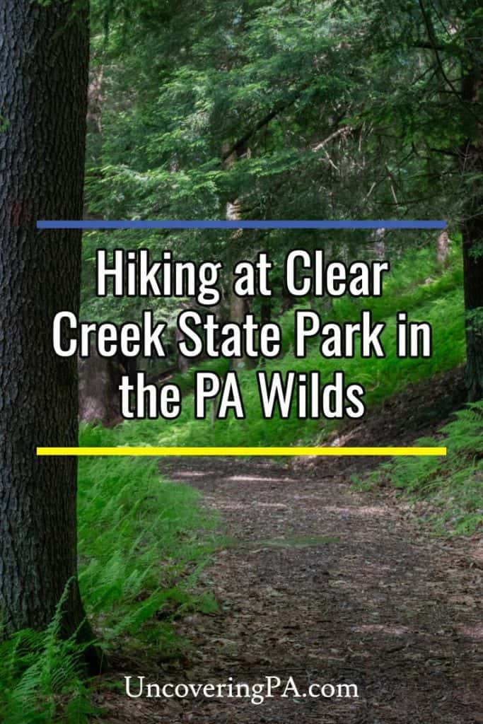 Hiking in Clear Creek State Park in the Pennsylvania Wilds