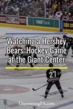 Attending a Hershey Bears' Hockey Game in Hershey, Pennsylvania