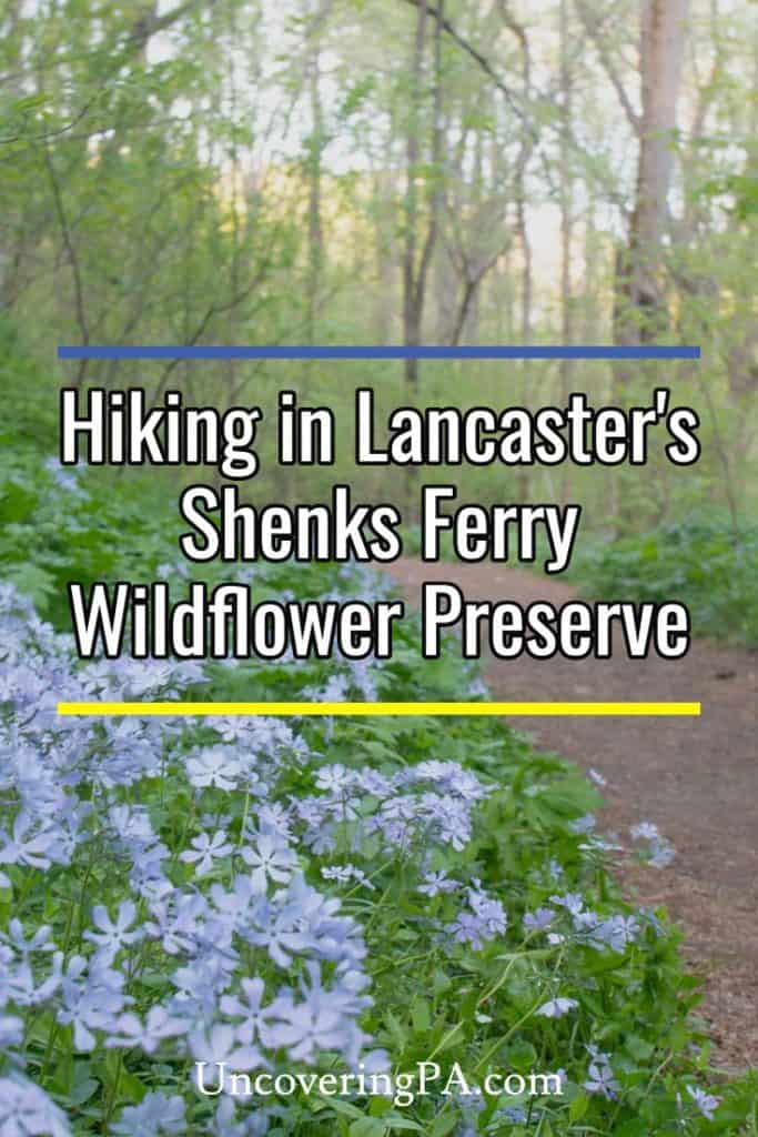 Hiking in Shenks Ferry Wildflower Preserve in Lancaster County, Pennsylvania