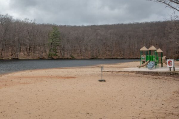 Beach at Black Moshannon State Park