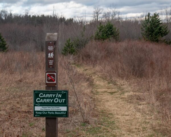 Hiking the Blueberry Trail in Black Moshannon State Park near Phillipsburg PA