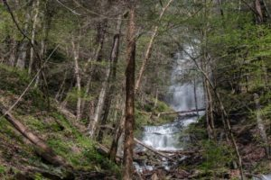Pennsylvania Waterfalls: How to Get to Chimney Hollow Falls in the PA Grand Canyon