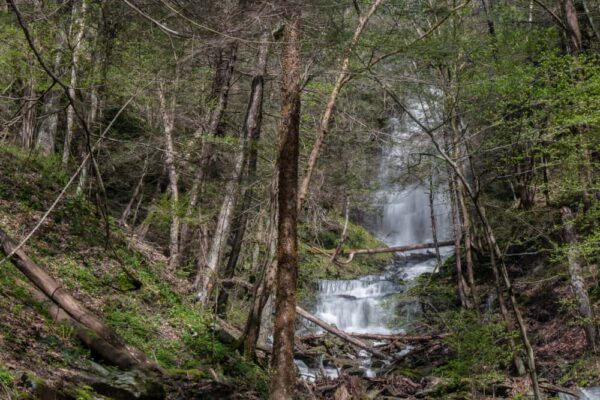 Chimney Hollow Falls in the Pennsylvania Grand Canyon
