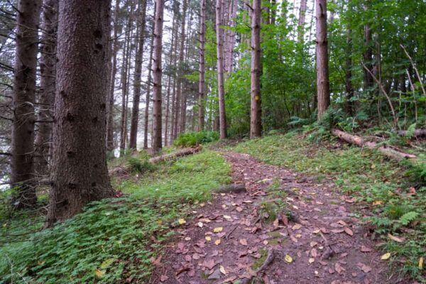 Hiking in Hills Creek State Park in Tioga County, PA