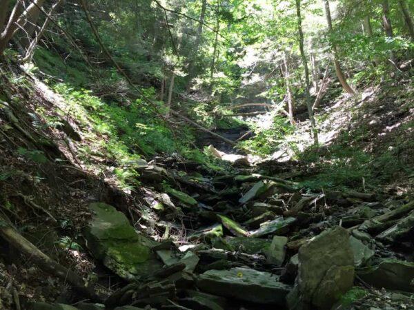 Hiking up Owassee Slide Run in the Pine Creek Gorge