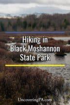 Black Moshannon State Park in Pennsylvania