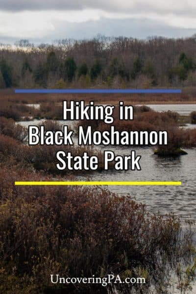 Black Moshannon State Park in Pennsylvania