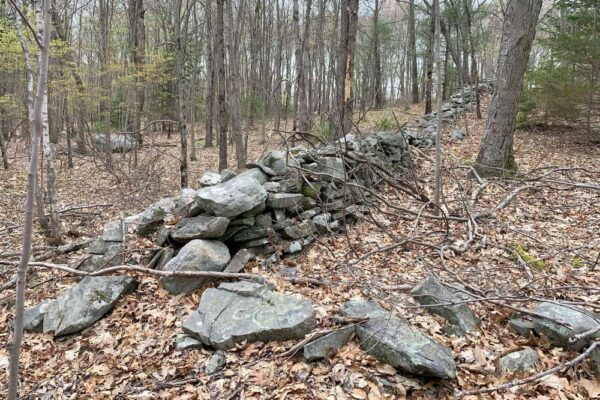 Old stone wall ruins at Camp Hidden Falls Girl Scout Camp