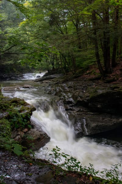 Lower Rock Run Falls in Loyalsock State Forest