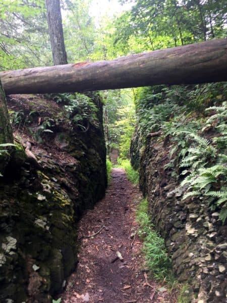Trail in Marshall's Falls Park near Stroudsburg, Pennsylvania