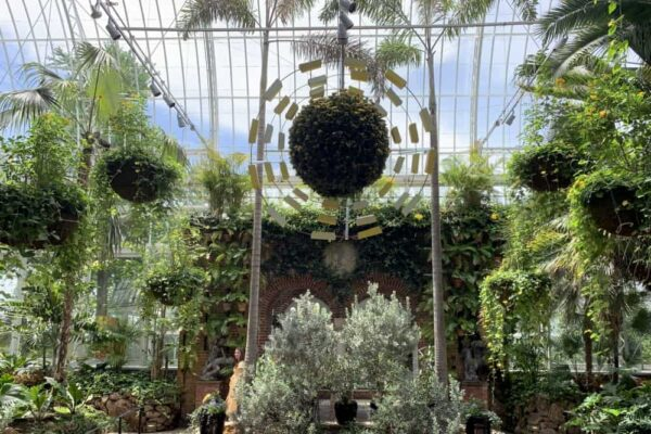Inside Phipps Conservatory in Pittsburgh, PA
