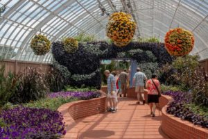 Exploring the Beauty of Phipps Conservatory in Pittsburgh