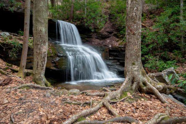 Round Island Run Falls in Clinton County, Pennsylvania