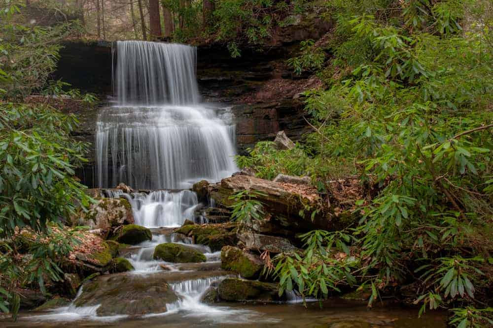How to Get to Round Island Run Falls in Sproul State Forest