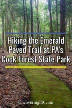 Paved Trail at Cook Forest State Park in the Pennsylvania Wilds