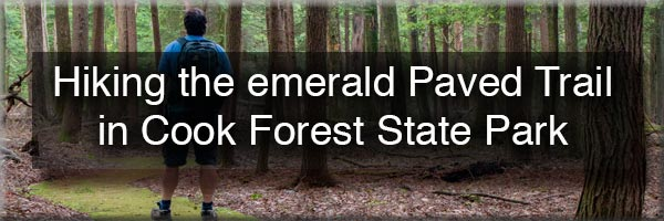 Hiking the Paved Trail in Cook Forest State Park