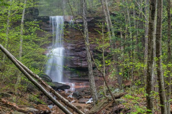 Dutchman Run Falls near Williamsport, PA
