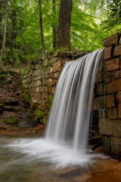 Henry Run Sawmill Dam Falls in Cook Forest State Park
