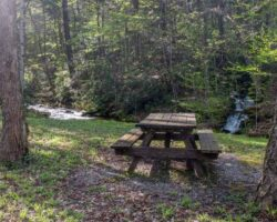 Upper Pine Bottom State Park: The Best Things to Do in this Small Park