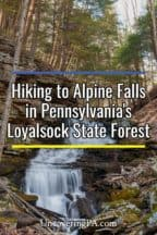 Alpine Falls in Pennsylvania's Loyalsock State Forest