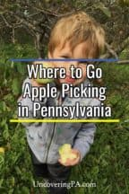 Apple picking in Pennsylvania