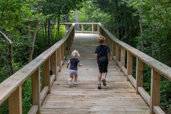 Kids hiking the Boardwalk Trail at Asbury Woods in Erie Pennsylvania
