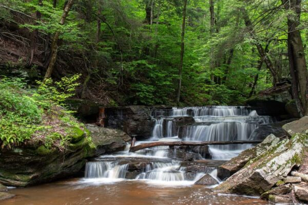 How to get to Pigeon Run Falls in Allegheny National Forest