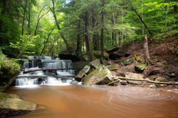 Pigeon Falls in the Allegheny National Forest of PA