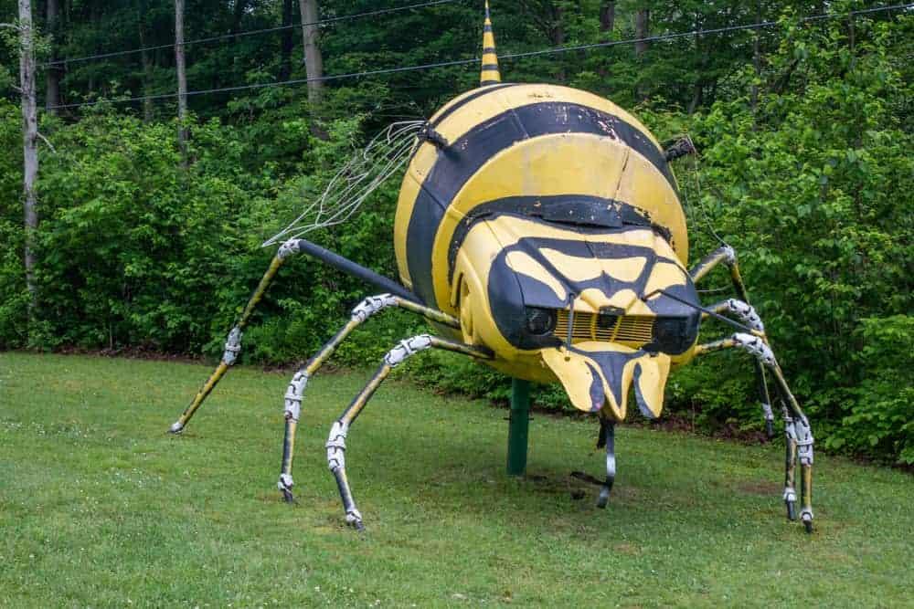 A bee at Schaefer's Auto Art near Erie, PA