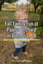 Fall at Paulus Orchard in Dillisburg PA