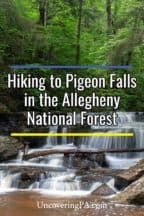 Pigeon Falls in the Allegheny National Forest of Pennsylvania