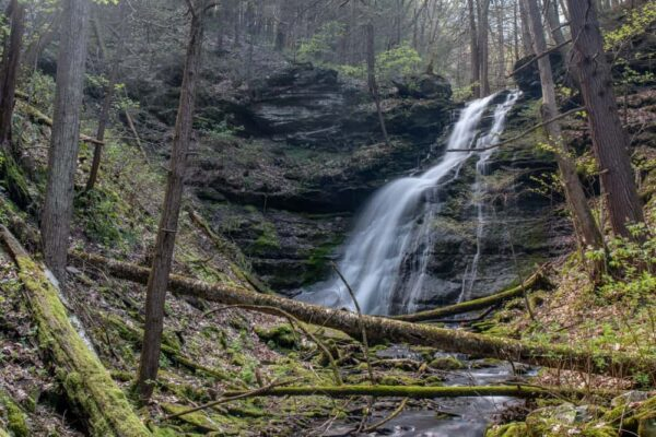 Hiking the Bohen Falls Trail in the Pennsylvania Grand Canyon