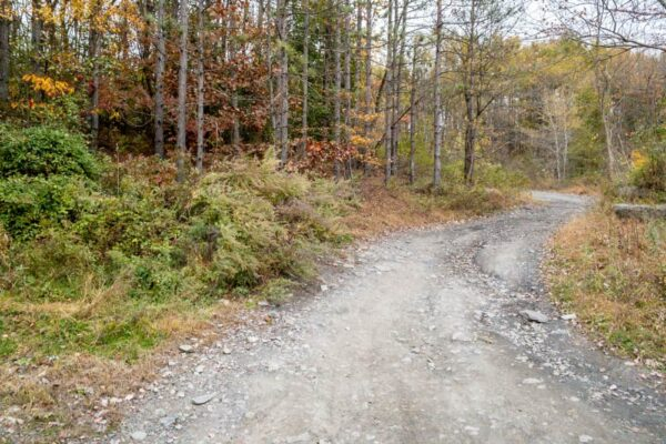 Trail to Concrete City in NEPA