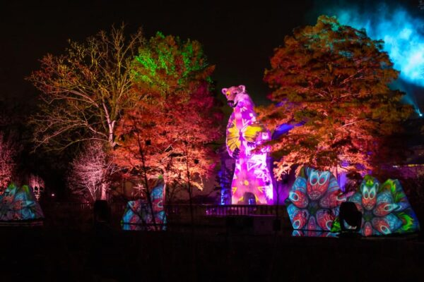 Polar bear light show at LumiNature at the Philadelphia Zoo