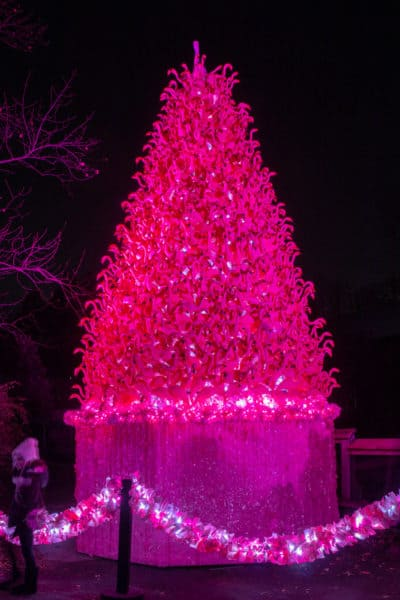 Pink flamingo Christmas tree at the Philly Zoo